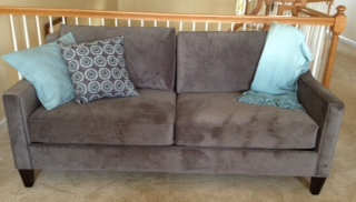 My new West Elm gray velvet sofa.