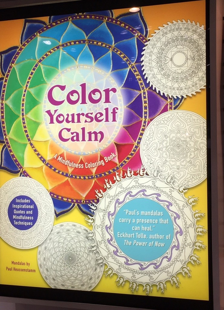 Color Yourself Calm, BEA 2015, Book Expo America, life after 50