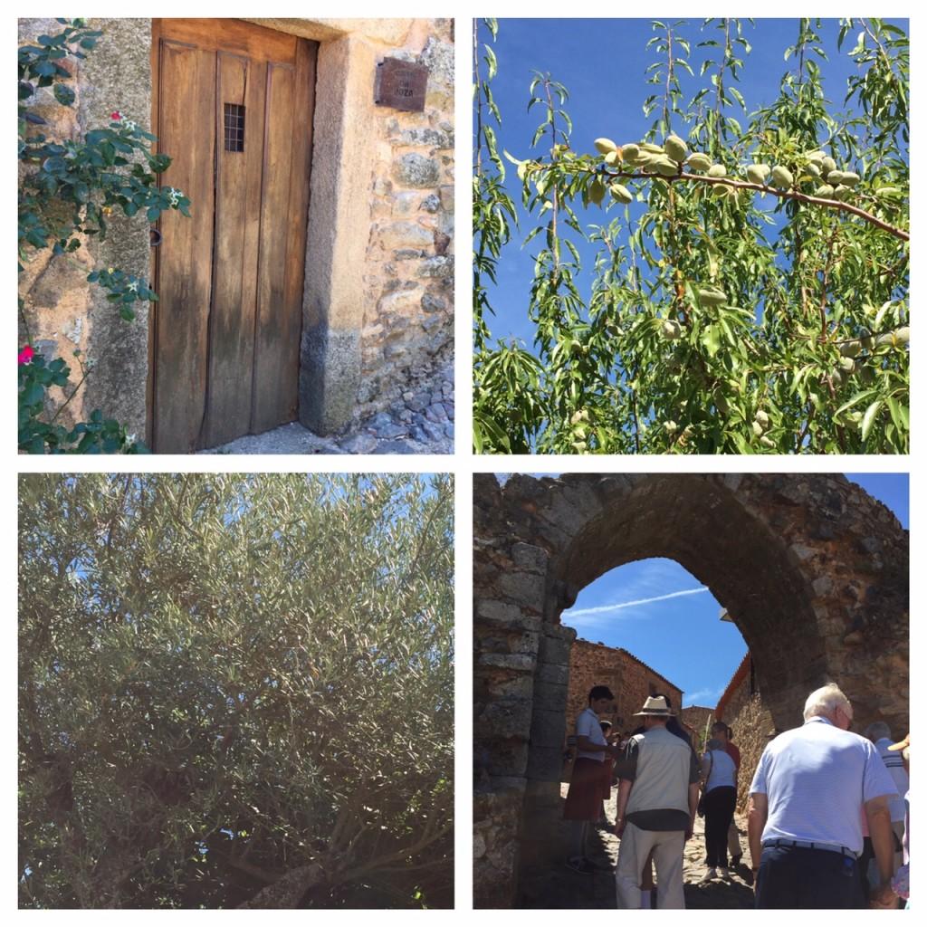 Castelo Rodrigo, almond trees, olive trees, Portugal, boomer travel