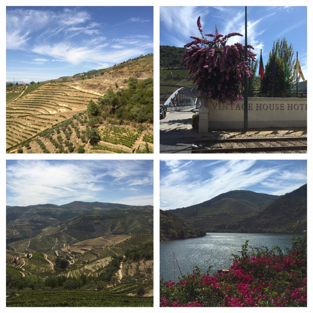 Douro River, Portugal, Favaios, Viking River Cruises, life after 50, boomers, boomer travel