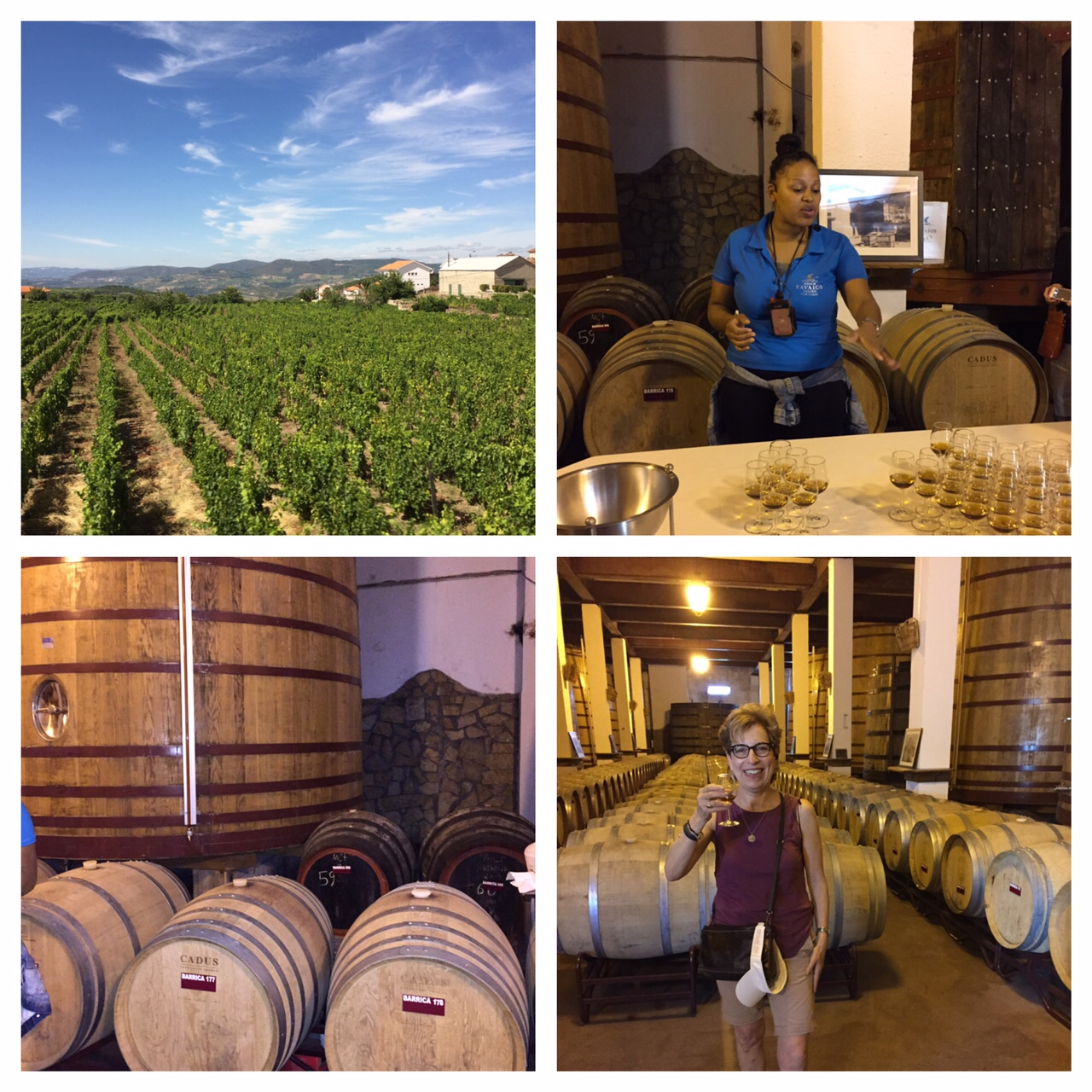 Muscatel wine, Portugal, Douro River, Viking River Cruises, Favaios, life after 50, boomer travel