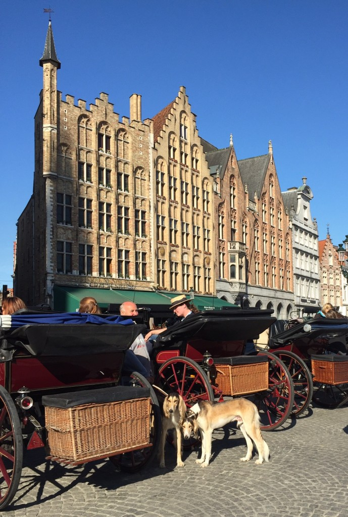 Bruges; Rhineland Discovery; Viking River Cruises; boomer travel