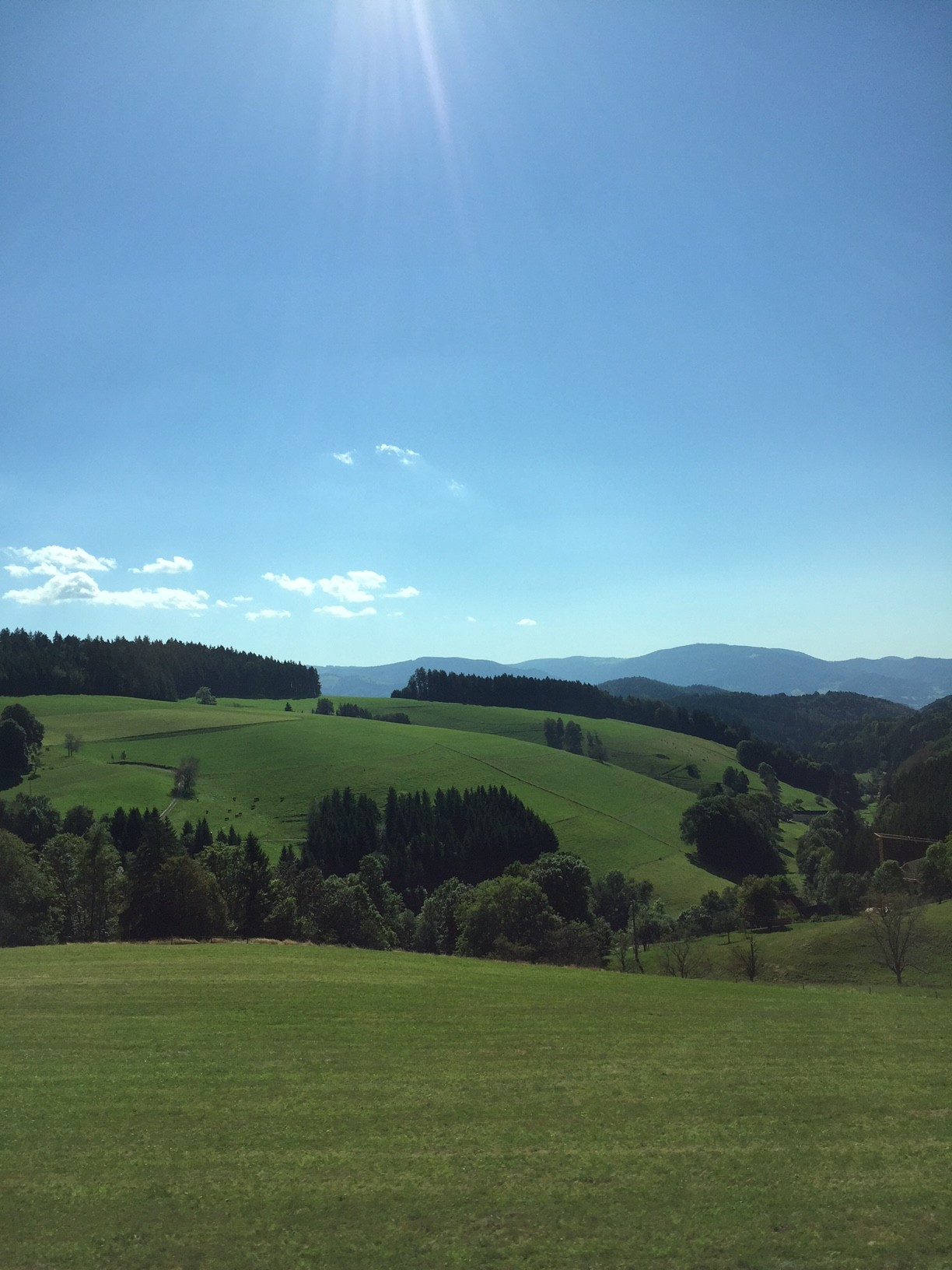 My Travels On Quot Rhineland Discovery Quot A Beautiful Day In