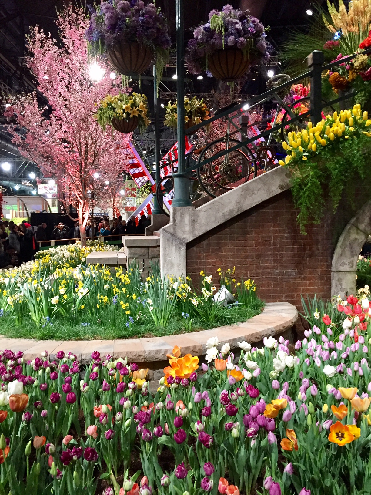 Philadelphia Flower Show; tulips