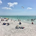 Exploring Fun Things To Do In Clearwater Beach
