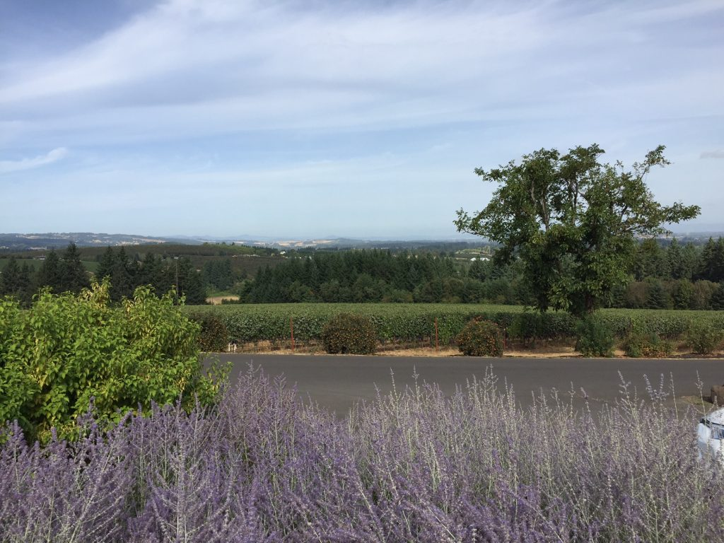 The Tualatin Valley, Willamette Valley, Oregon, boomer travel, post 50 travel