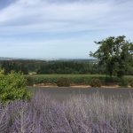 Exploring The Great Outdoors In The Tualatin Valley