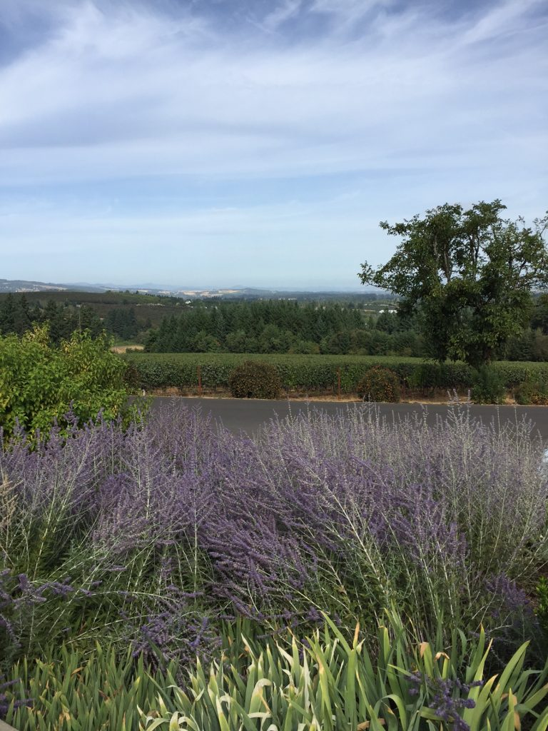The Tualatin Valley; The Willamette Valley; Oregon Wine Country; Oregon