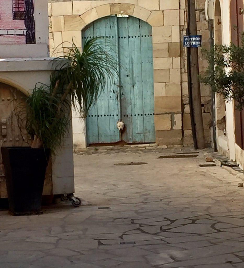 Old Town Limassol, Cyprus, Viking Ocean Cruise