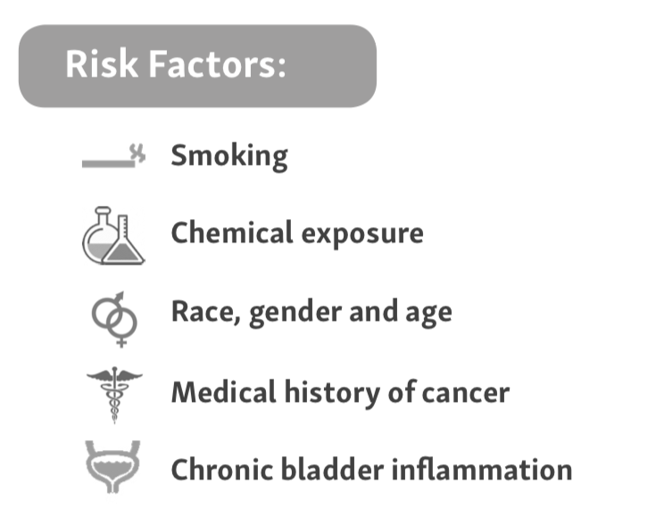 Risk factors for bladder cancer; bladder cancer