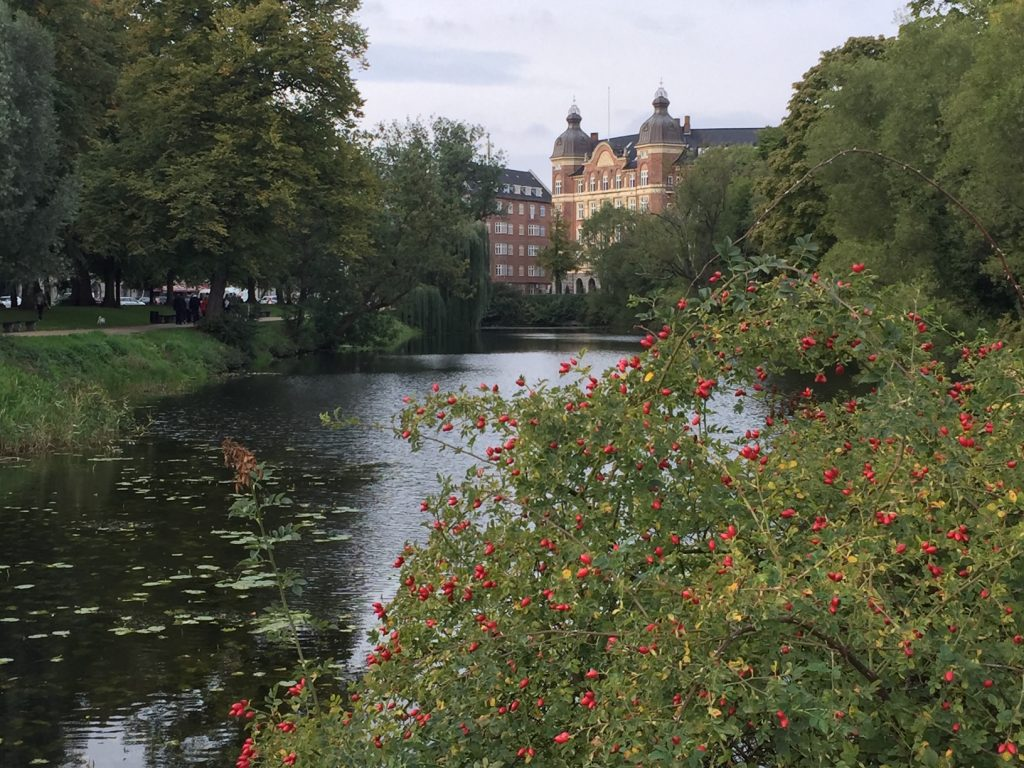Walking Tour of Copenhagen; Viking Ocean Cruise