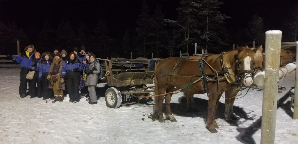 horse drawn carriage ride in Lapland