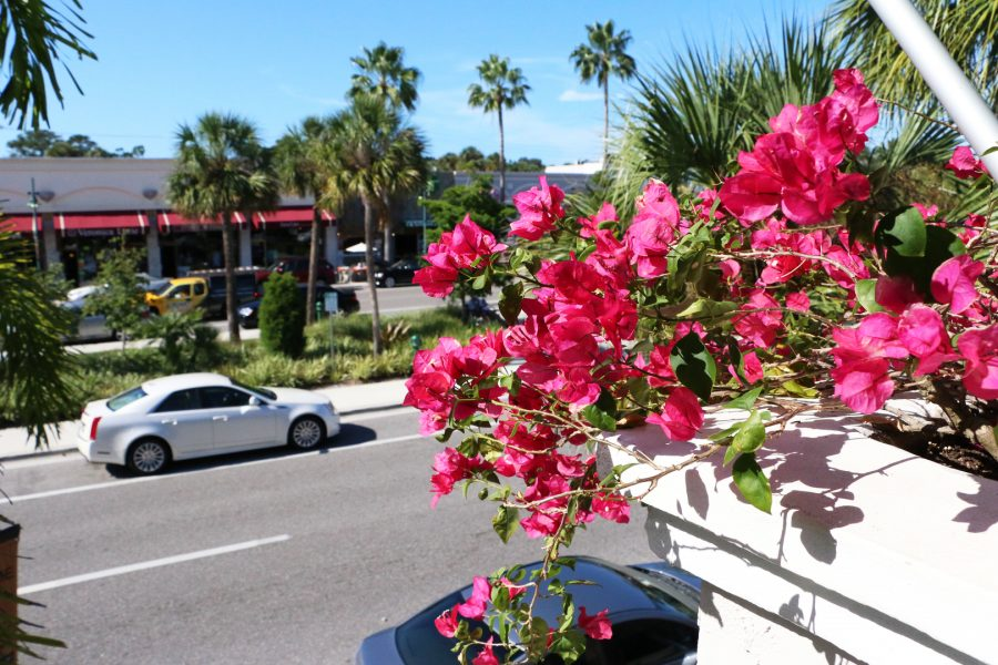 St. Armands Circle in Sarasota