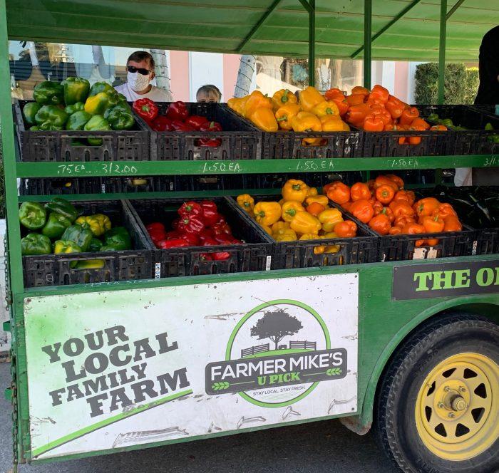 3rd Street Farmer's Market in Naples Florida